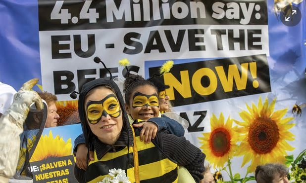 EU bans pesticides which harms bees