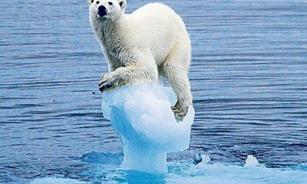 Arctic ice sets new record low for winter