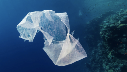 Solutions to reducing plastic pollution in the oceans