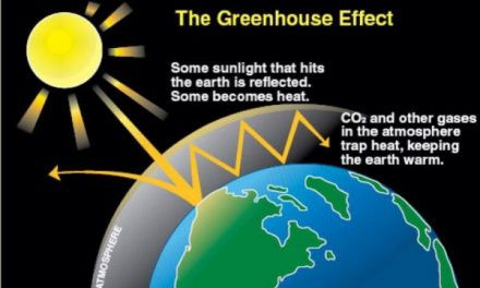 Greenhouse Gases: Sources