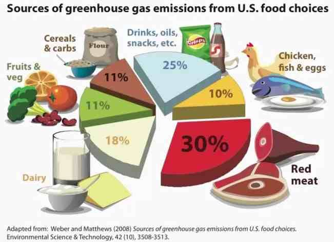 Greenhouse gas emissions from food